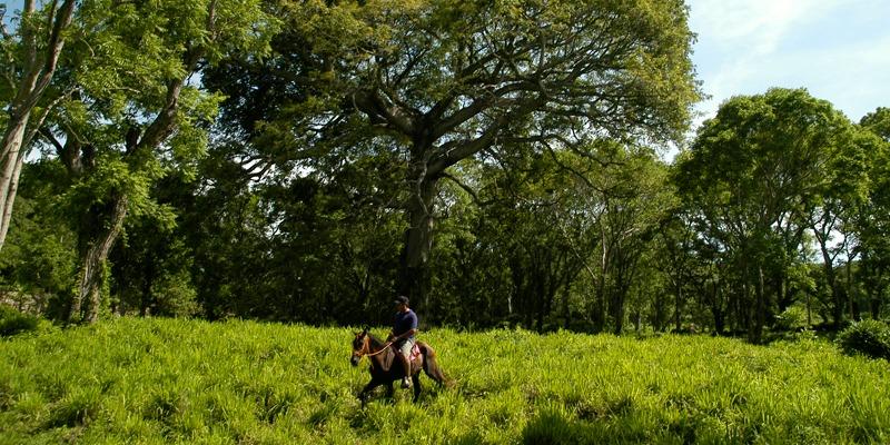 san juan de la isla nicaragua