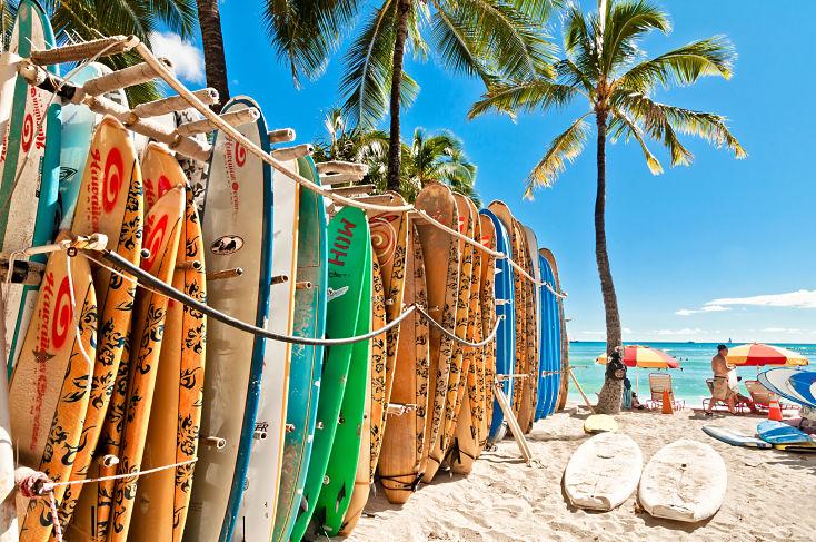 Surf Oahu